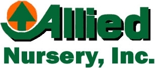 Allied Nursery
